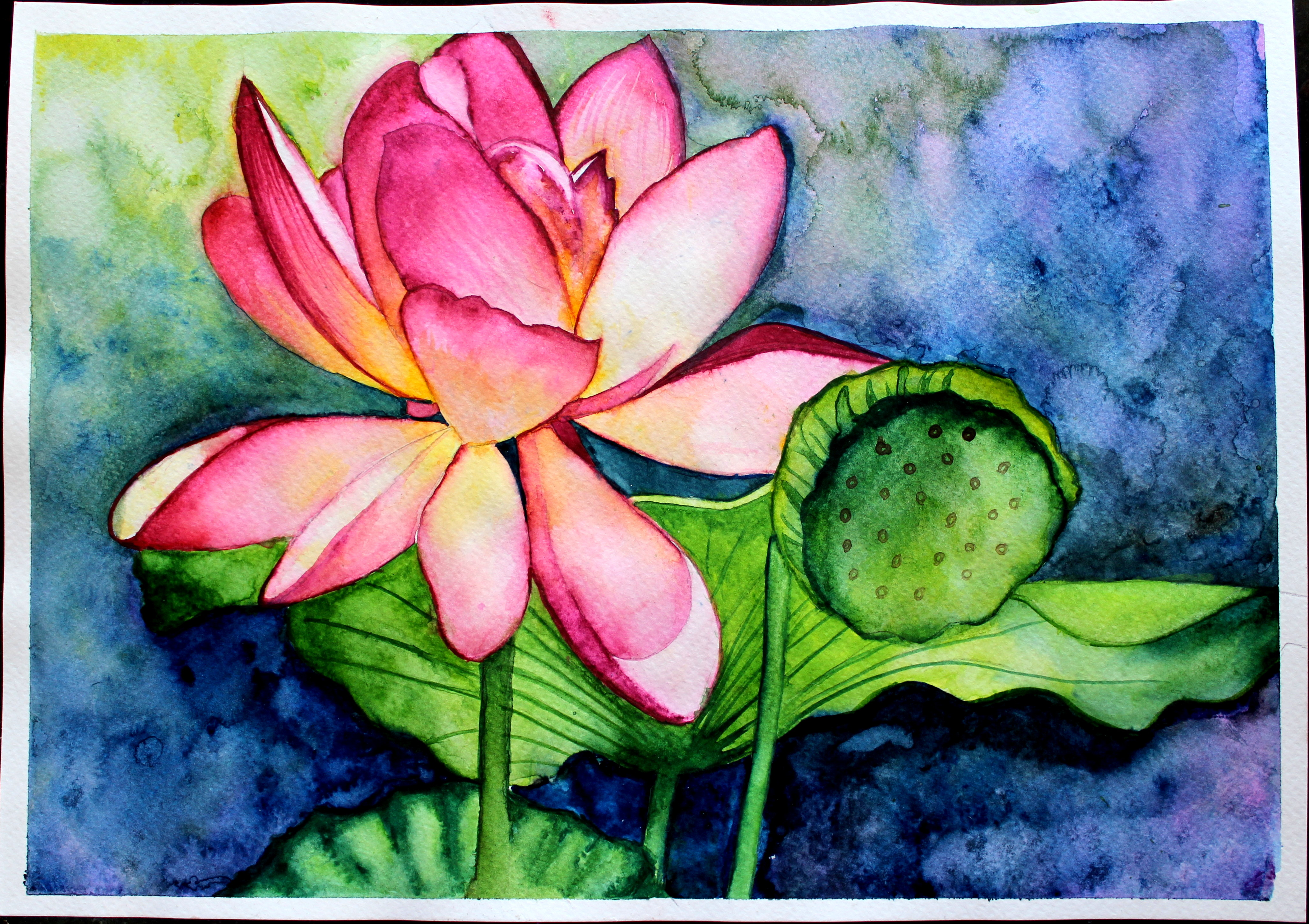 WATERCOLOR PAINTING LOTUS - CREATIVE ART